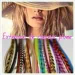 extension-plume-cheveux